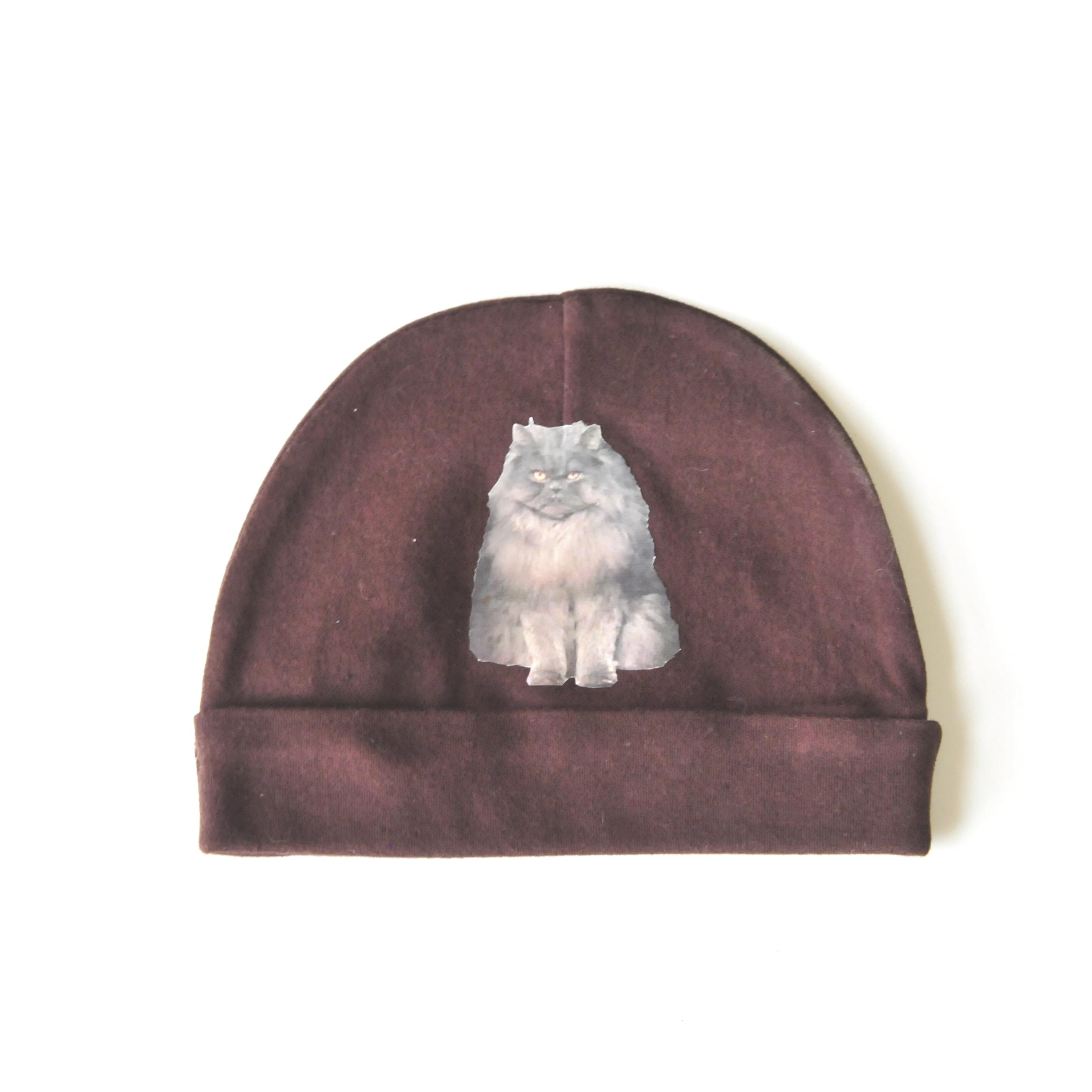 Grumpy Persian Cat In A Hat