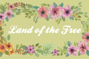 Land of the Free Printable Desktop Background