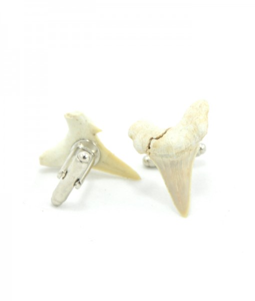 Shark Tooth Cuff Links
