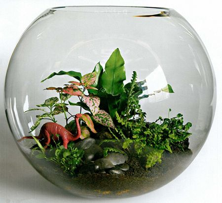Terrarium featuring dinosaurs Ways to Use Miniature Animals