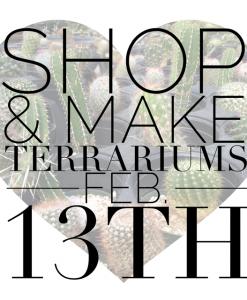 Valentine's terrarium bar feb 13th | Glass Terrariums & Succulent Terrariums