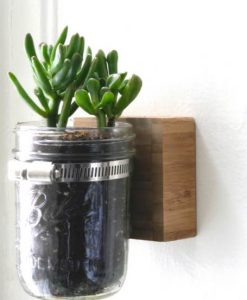 wall mounted mason jar planter_Fotor