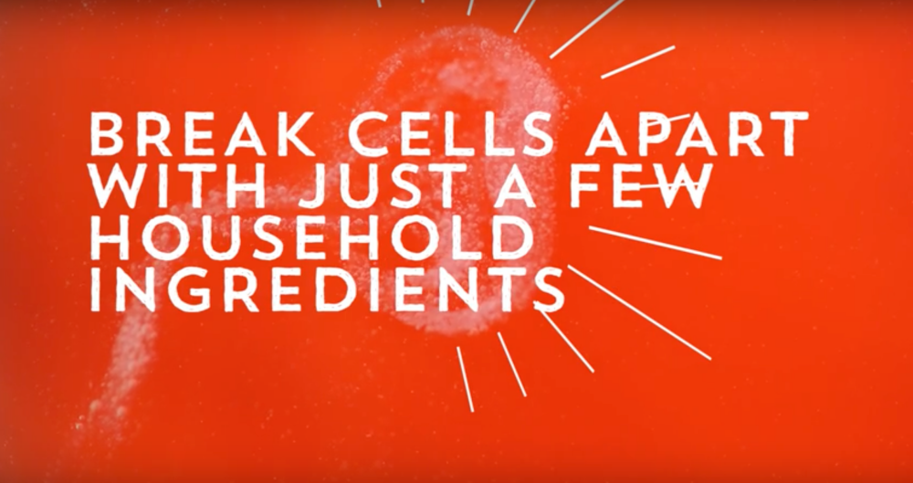 break cells apart with just a few household ingredients