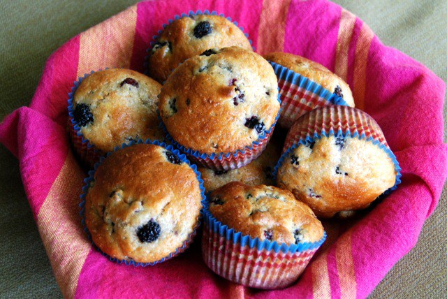 lemon dewberry muffins recipe dewberry recipe round up at pop shop america
