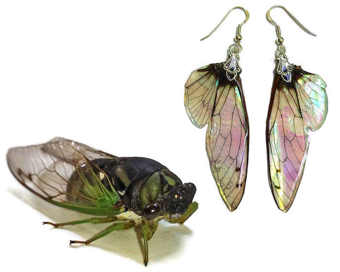 Kristin Jarvis Fairy Wing Earrings and Lotus