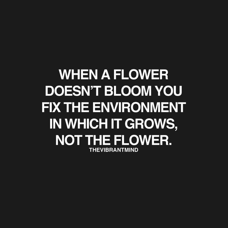 quotes about flowers inspirational quotes