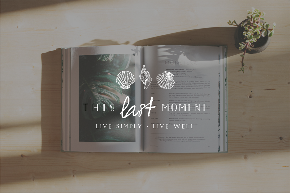 This-Last-Moment-Logo-Miel-Cafe-Design