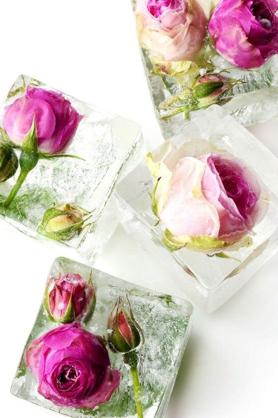 floral ice cubes easy diy pop shop america