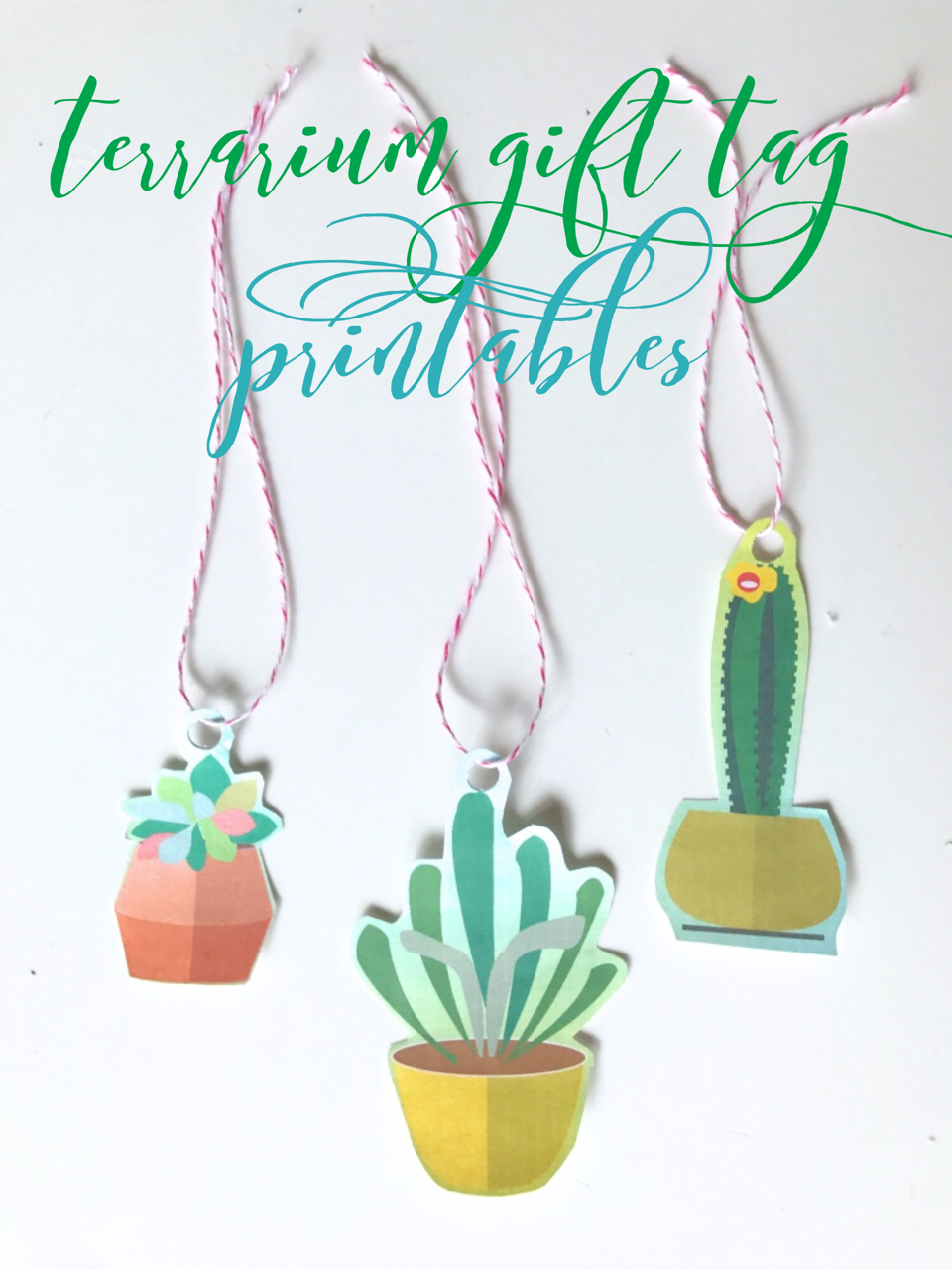 terrarium gift tag printables pinterest